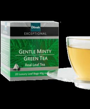 Dilmah Gently Minty Green Tea - Asijah Europe