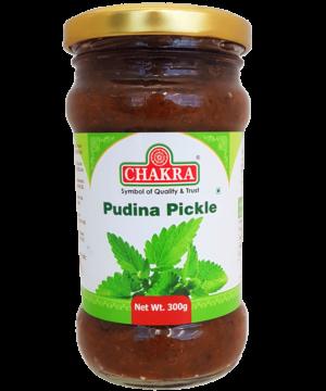 Chakra Pudina Pickle - Asijah Europe